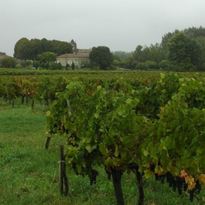 Castillon-Côtes-De-Bordeaux