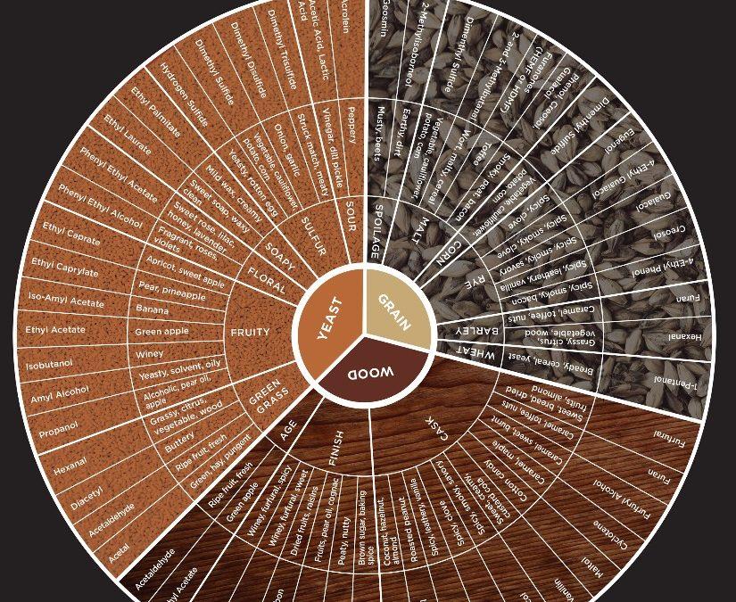 Conception novatrice d'une roue des arômes du Whisky